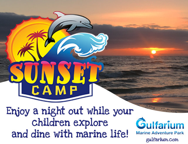 SUNSET CAMP MARCH 22 & 29!